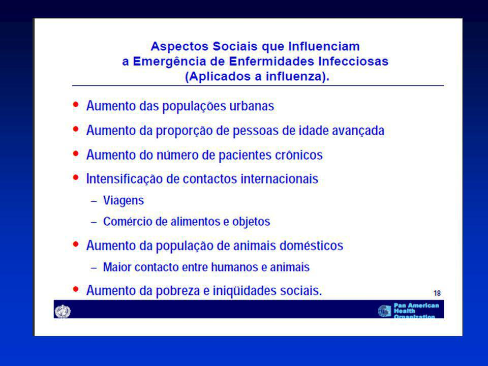 H1N1 Pandemico– Brasil Fonte – Boletim Eletronico Epidemiologico – 23/07/2009 www.portal.saude.gov.br