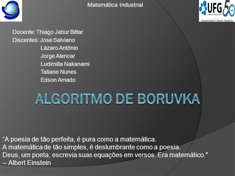 Docente: Thiago Jabur Bittar Discentes: José Salviano Lázaro Antônio Jorge Alencar Ludimilla Nakanami Tatiane Nunes Edson Amado A poesia de tão perfeita, é pura como a matemática.