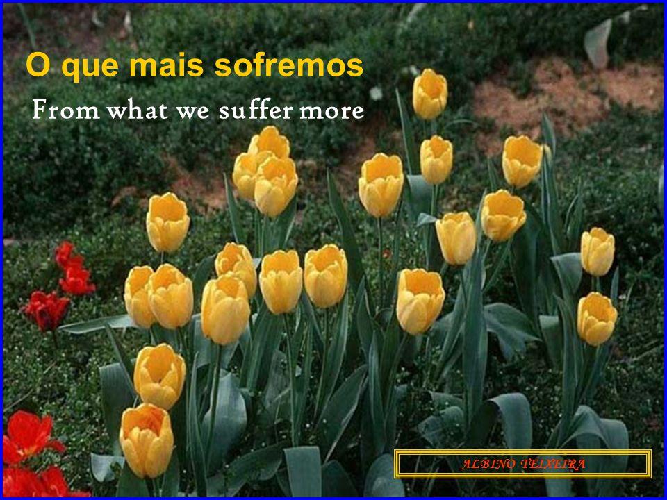 O que mais sofremos ALBINO TEIXEIRA From what we suffer more