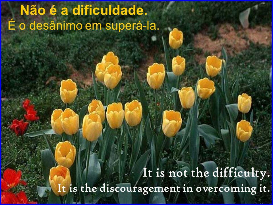 Não é a dificuldade.É o desânimo em superá-la. It is not the difficulty.