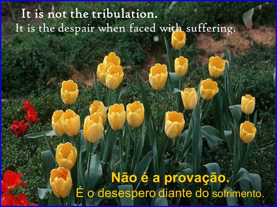 Não é a provação.É o desespero diante do sofrimento.