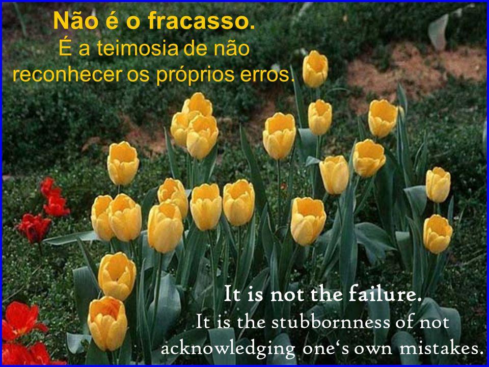 Não é o fracasso.É a teimosia de não reconhecer os próprios erros.