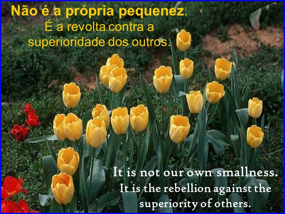 Não é a própria pequenez.É a revolta contra a superioridade dos outros.