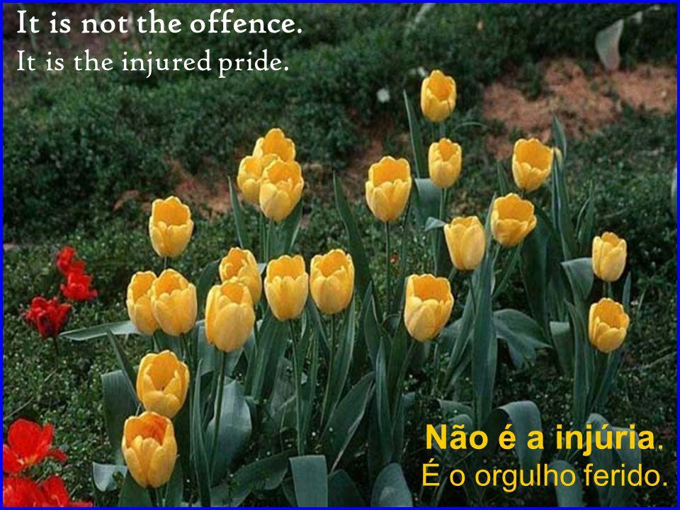 Não é a injúria. É o orgulho ferido. It is not the offence. It is the injured pride.