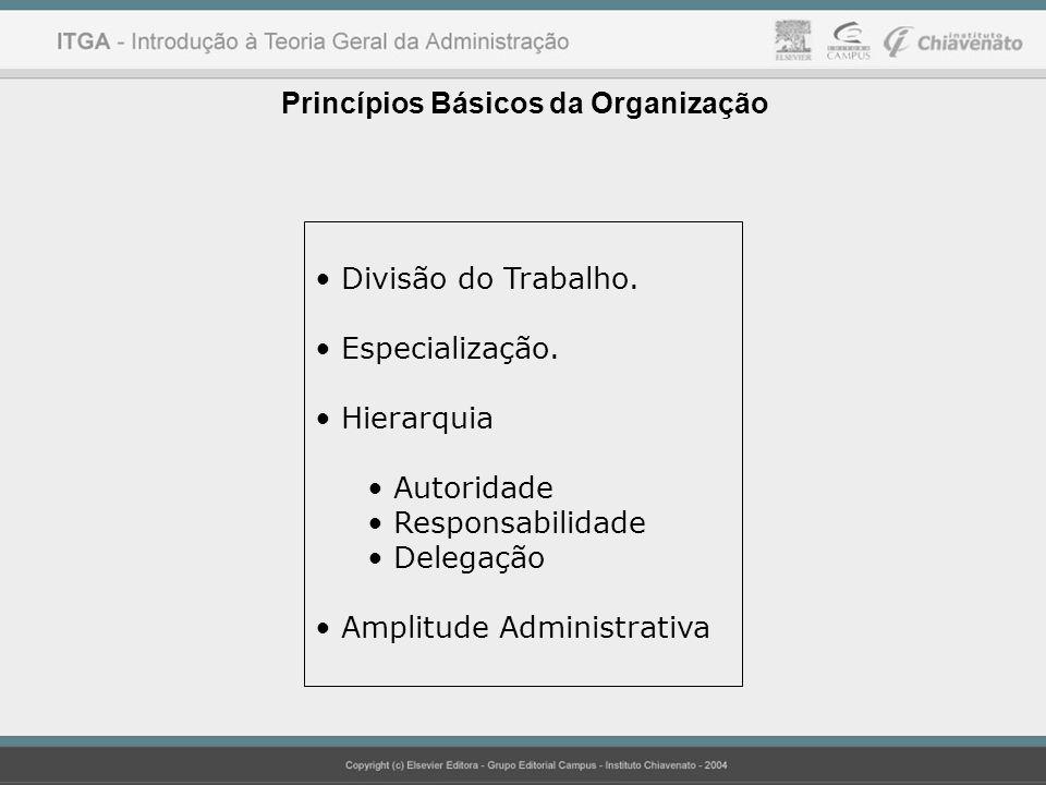 Princípios Básicos da Organização Divisão do Trabalho. Especialização. Hierarquia Autoridade Responsabilidade Delegação Amplitude Administrativa