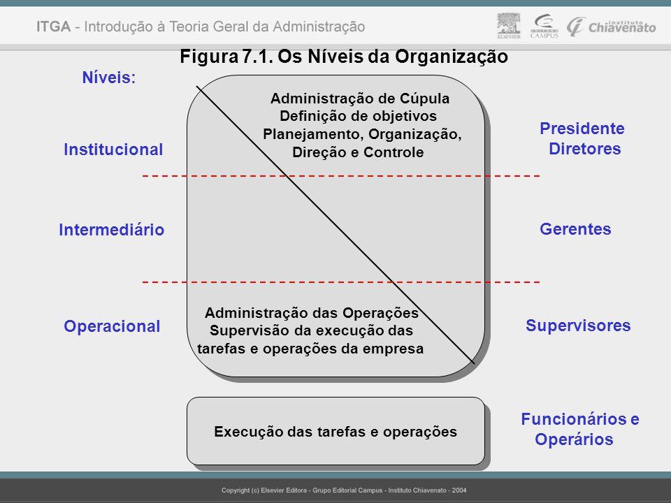 Níveis: Institucional Intermediário Operacional Administração de Cúpula Definição de objetivos Planejamento, Organização, Direção e Controle Administr