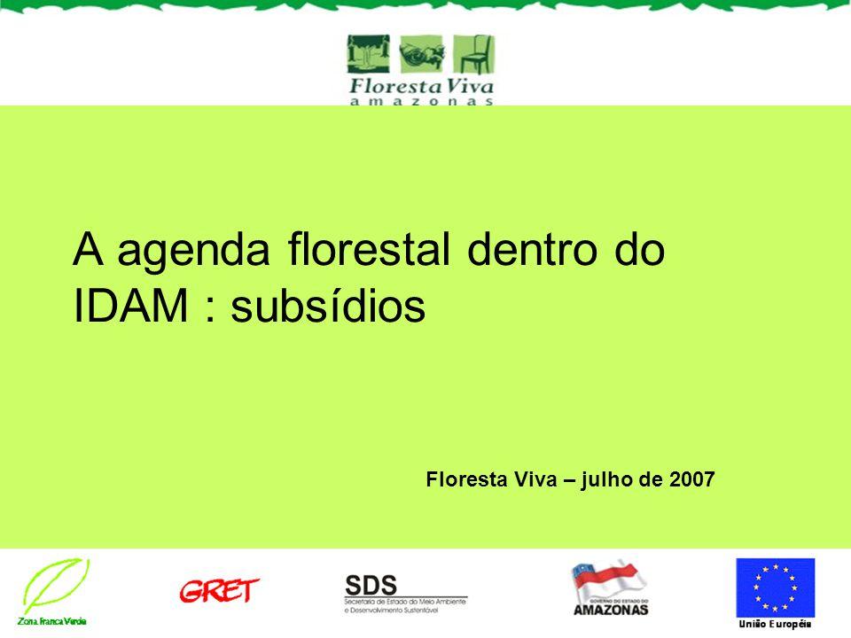 A agenda florestal dentro do IDAM : subsídios Floresta Viva – julho de 2007