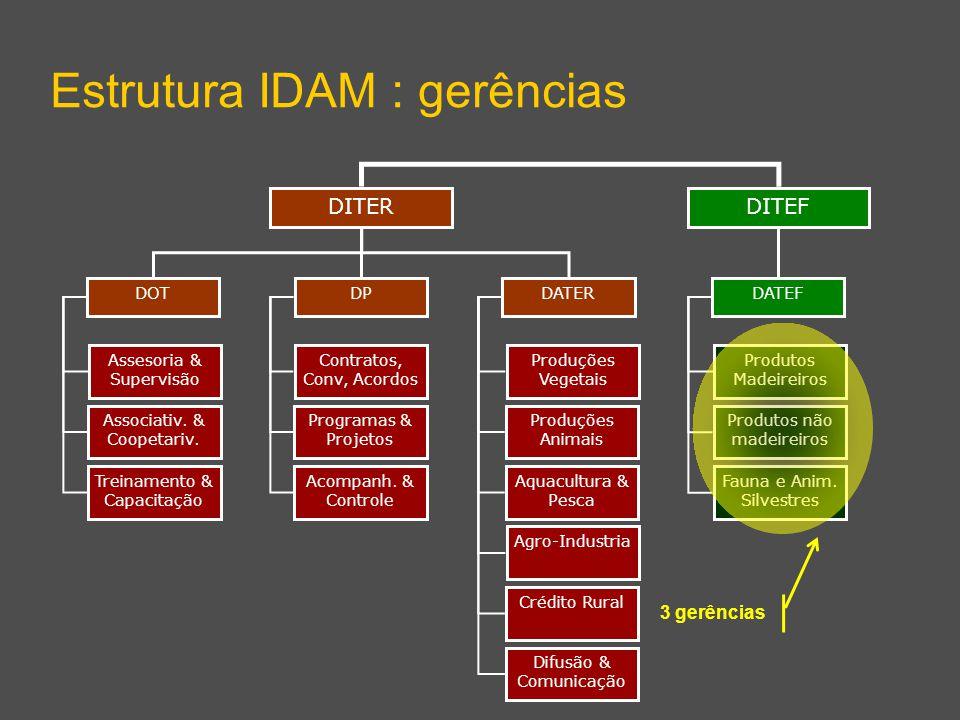 DITEF Estrutura IDAM : gerências DITER DPDATERDOT DATEF Assesoria & Supervisão Associativ.