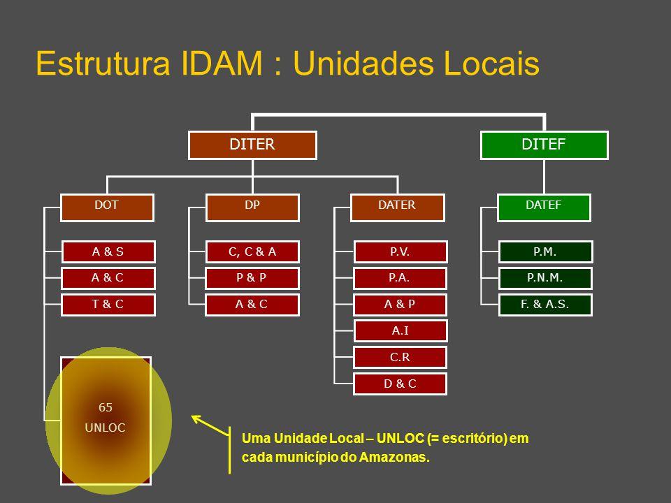 DITEF Estrutura IDAM : Unidades Locais DITER DPDATERDOT DATEF A & S A & C T & C 65 UNLOC C, C & A P & P A & C P.V. P.A. A & P A.I C.R D & C P.M. P.N.M