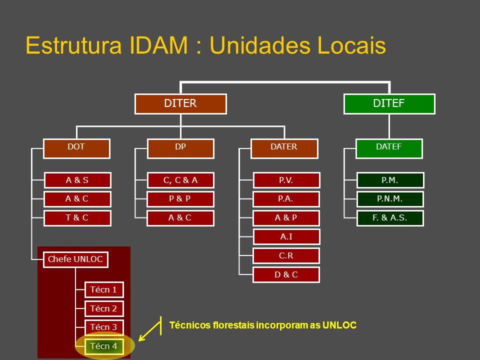 DITEF Estrutura IDAM : Unidades Locais DITER DPDATERDOT DATEF A & S A & C T & C Chefe UNLOC C, C & A P & P A & C P.V. P.A. A & P A.I C.R D & C P.M. P.