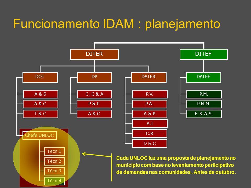 DITEF Funcionamento IDAM : planejamento DITER DPDATERDOT DATEF A & S A & C T & C Chefe UNLOC C, C & A P & P A & C P.V. P.A. A & P A.I C.R D & C P.M. P