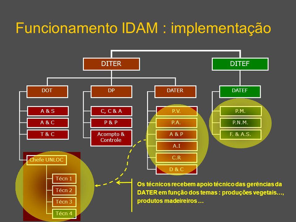 DITEF Funcionamento IDAM : implementação DITER DPDATERDOT DATEF A & S A & C T & C Chefe UNLOC C, C & A P & P Acompto & Controle P.V. P.A. A & P A.I C.
