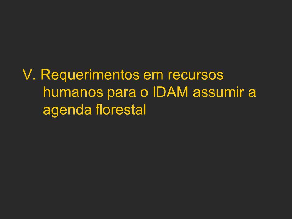 V. Requerimentos em recursos humanos para o IDAM assumir a agenda florestal