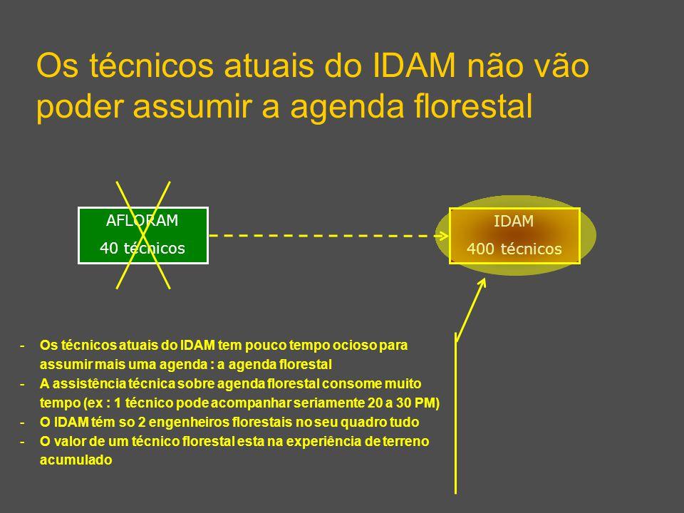 Os técnicos atuais do IDAM não vão poder assumir a agenda florestal IDAM 400 técnicos AFLORAM 40 técnicos - Os técnicos atuais do IDAM tem pouco tempo