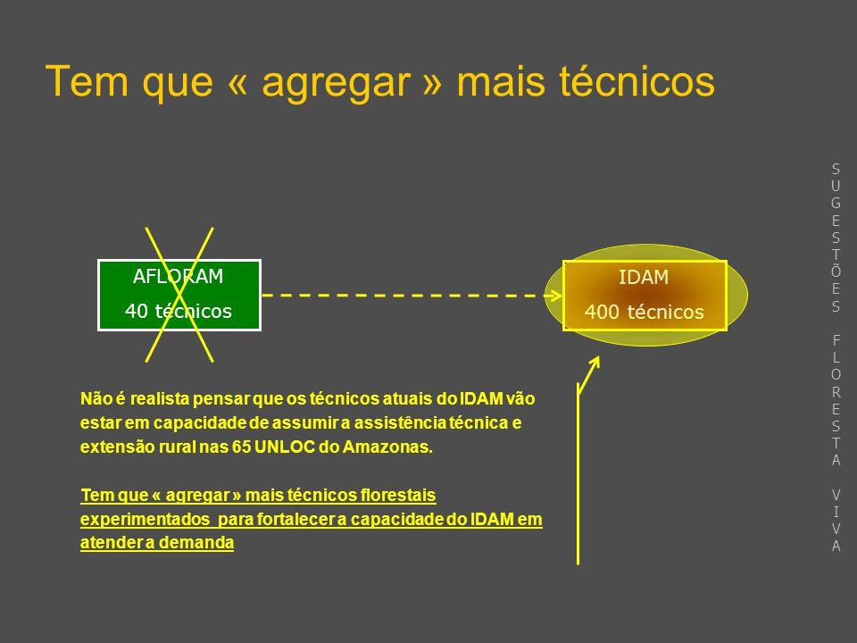 Tem que « agregar » mais técnicos IDAM 400 técnicos AFLORAM 40 técnicos Não é realista pensar que os técnicos atuais do IDAM vão estar em capacidade de assumir a assistência técnica e extensão rural nas 65 UNLOC do Amazonas.