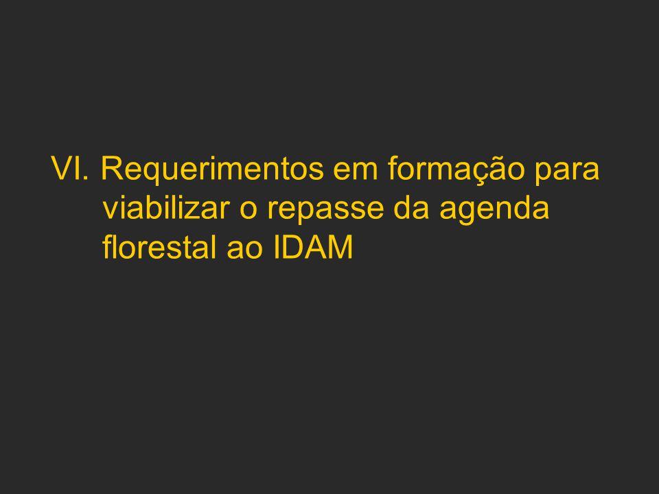 VI. Requerimentos em formação para viabilizar o repasse da agenda florestal ao IDAM