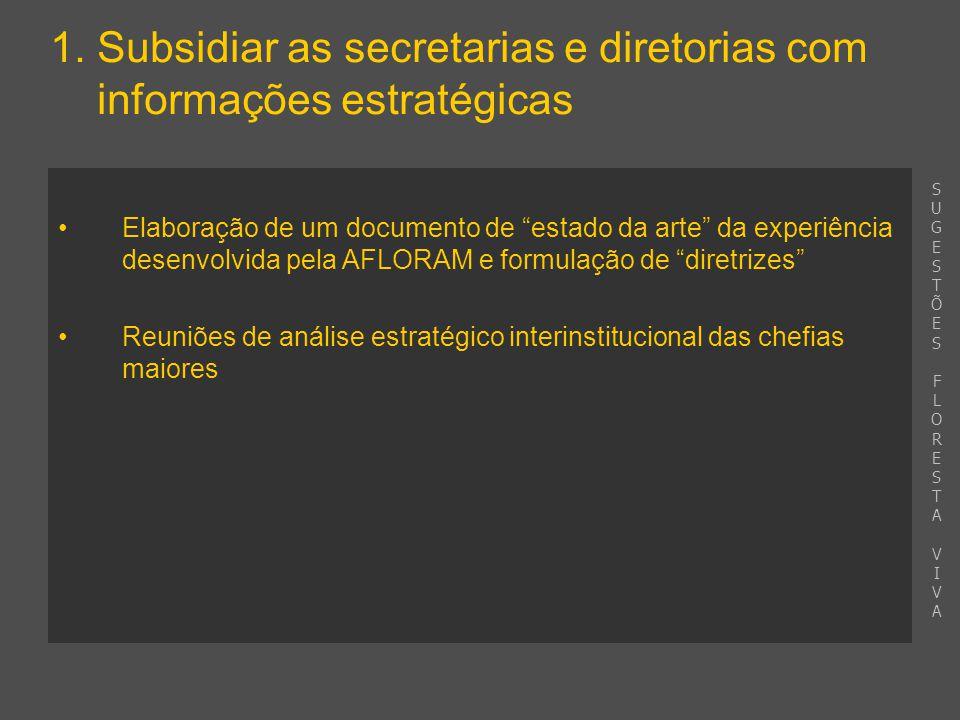 """1. Subsidiar as secretarias e diretorias com informações estratégicas Elaboração de um documento de """"estado da arte"""" da experiência desenvolvida pela"""