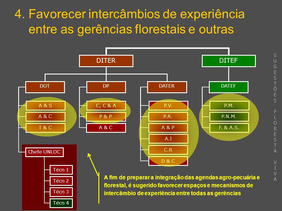 DITEF 4. Favorecer intercâmbios de experiência entre as gerências florestais e outras DITER DPDATERDOT DATEF A & S A & C T & C Chefe UNLOC C, C & A P