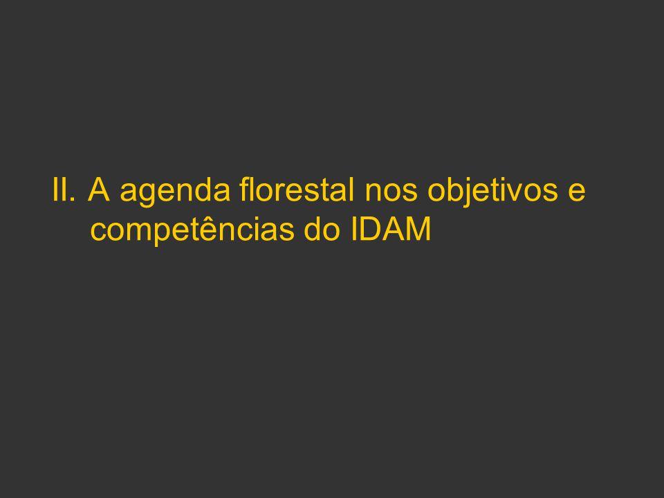 II. A agenda florestal nos objetivos e competências do IDAM