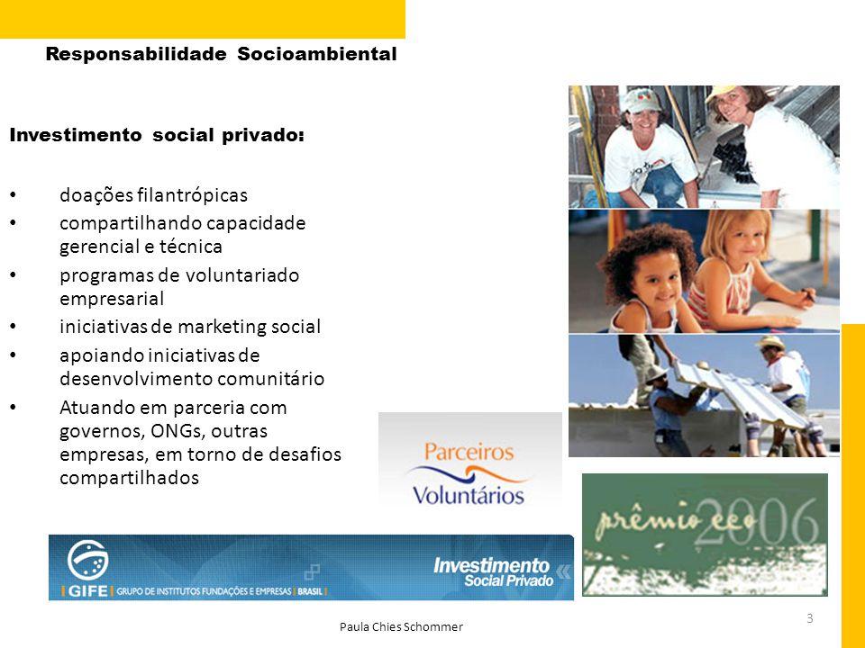3 Investimento social privado: doações filantrópicas compartilhando capacidade gerencial e técnica programas de voluntariado empresarial iniciativas d