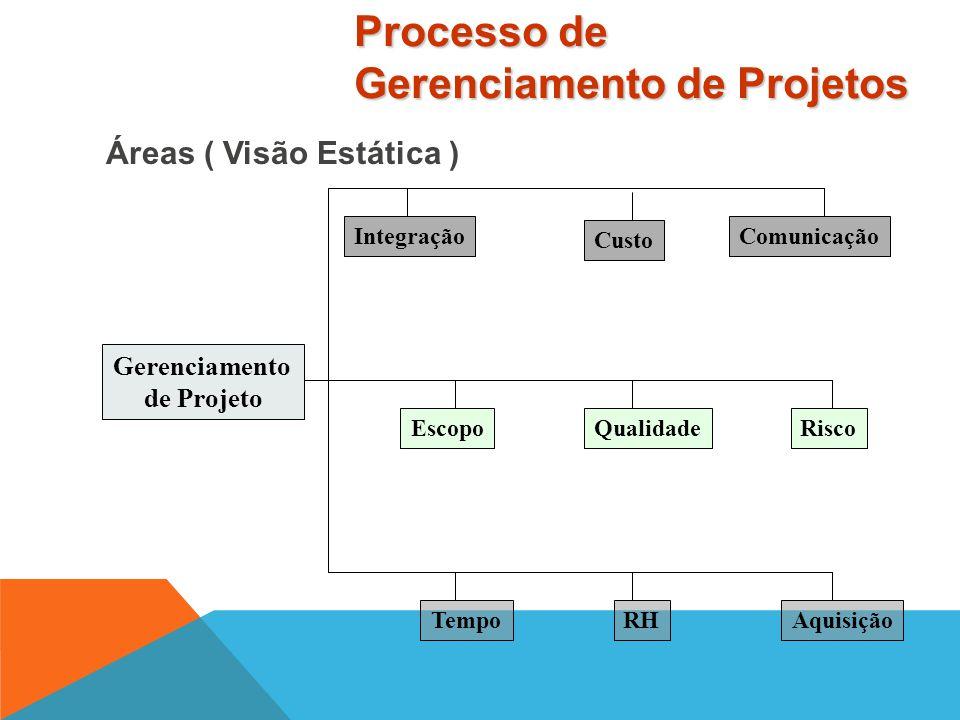 Projetos são compostos de processos Um processo é uma série de ações que provocam um resultado Duas Categorias que se sobrepõem e interagem ao longo d