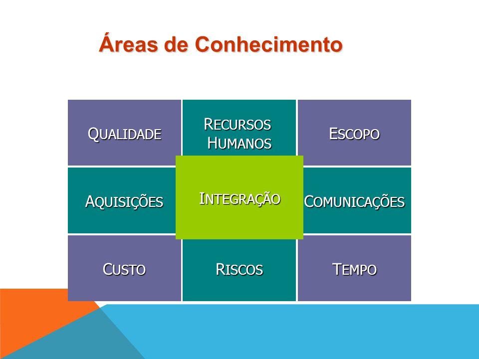 Cada processo é descrito em termos de:  Entradas (inputs): documentos de trabalho  Ferramentas e Técnicas: mecanismos aplicados nas entradas para ge