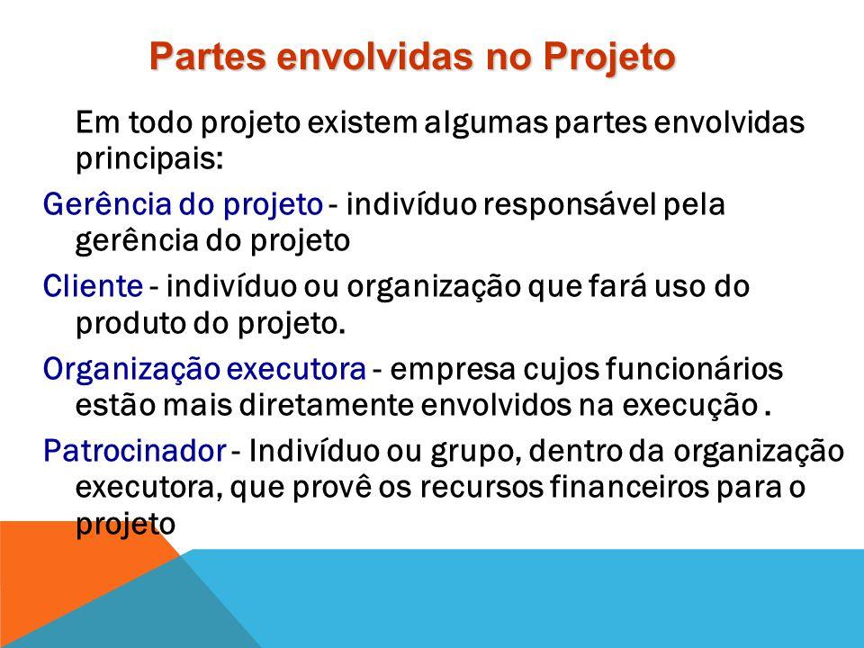 Seleção e suporte de projetos ou programas de investimentos. Esses investimentos em projetos e programas são guiados pelo plano estratégico da organiz