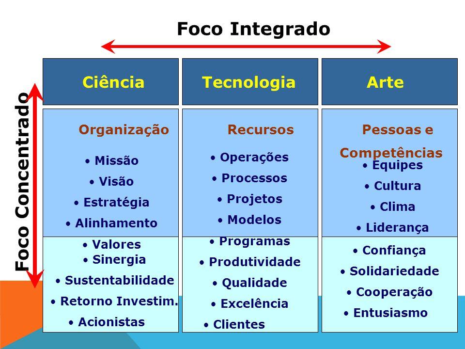 Arte Pessoas e Competências Equipes Cultura Clima Liderança Foco Concentrado Confiança Solidariedade Cooperação Entusiasmo Engajamento