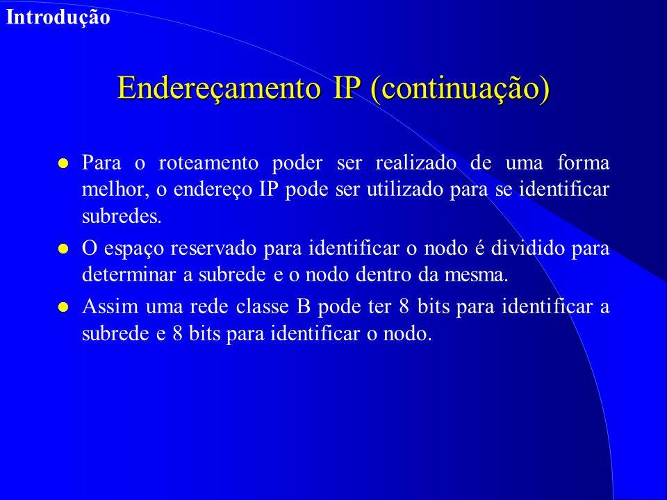 Endereçamento IP (continuação) l Para o roteamento poder ser realizado de uma forma melhor, o endereço IP pode ser utilizado para se identificar subredes.
