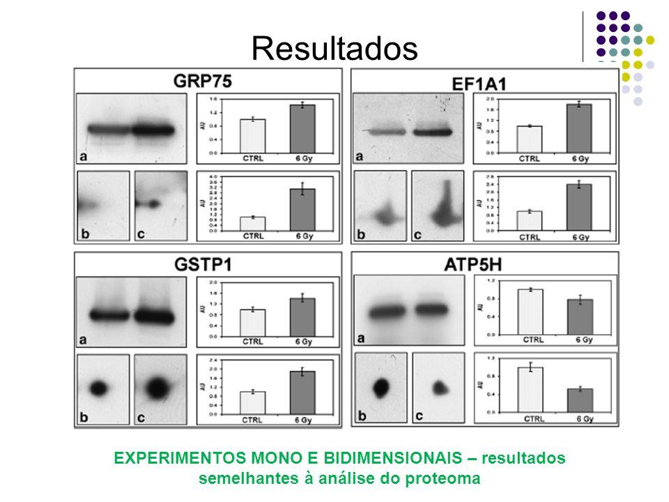 Resultados 5,46,2 EXPERIMENTOS MONO E BIDIMENSIONAIS – resultados semelhantes à análise do proteoma