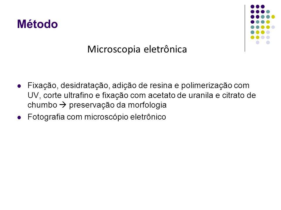 Método Fixação, desidratação, adição de resina e polimerização com UV, corte ultrafino e fixação com acetato de uranila e citrato de chumbo  preservação da morfologia Fotografia com microscópio eletrônico Microscopia eletrônica