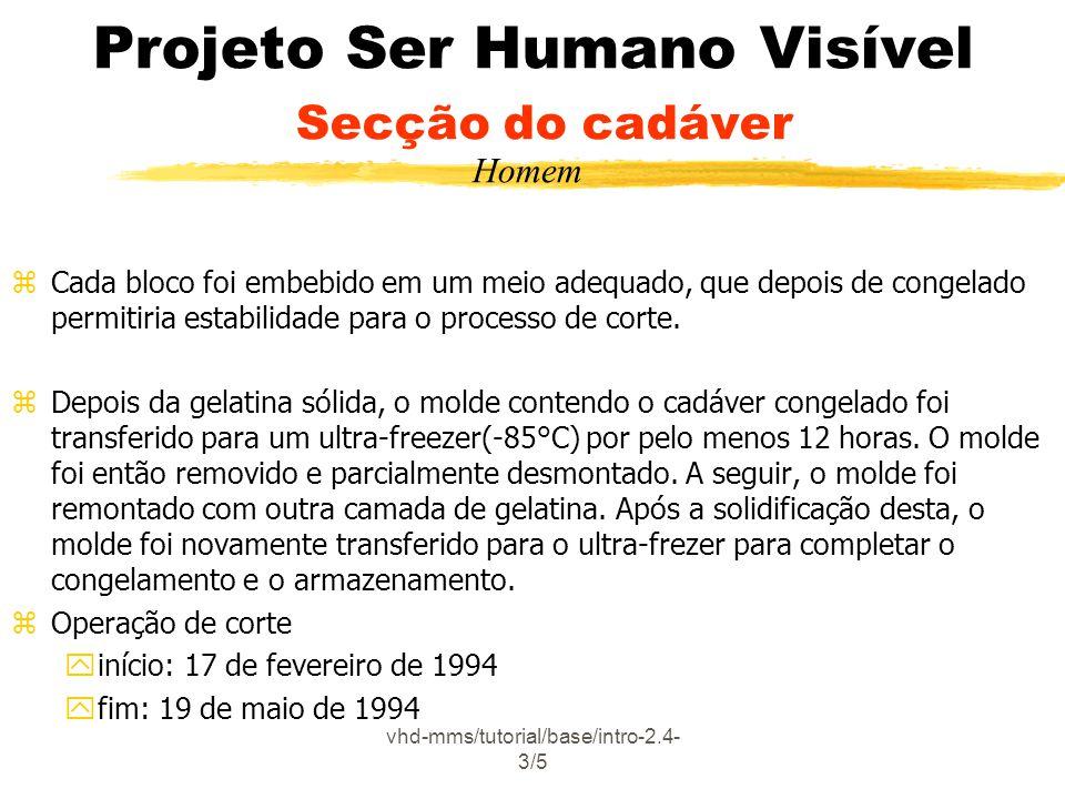 vhd-mms/tutorial/base/intro-2.4- 3/5 Projeto Ser Humano Visível Secção do cadáver zCada bloco foi embebido em um meio adequado, que depois de congelad