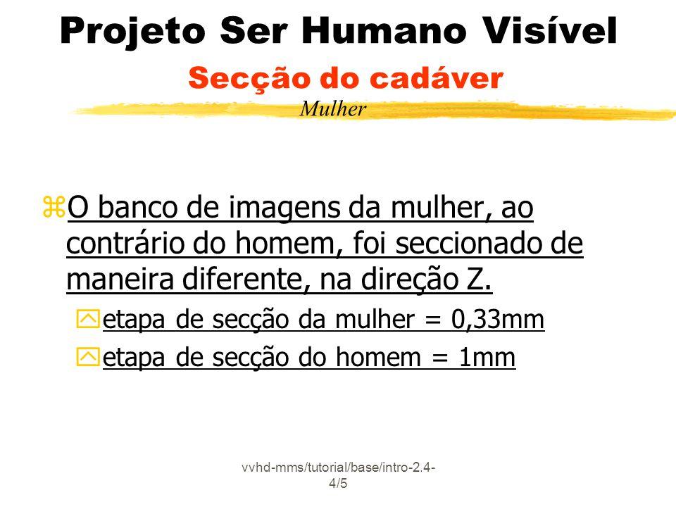 vvhd-mms/tutorial/base/intro-2.4- 4/5 Projeto Ser Humano Visível Secção do cadáver zO banco de imagens da mulher, ao contrário do homem, foi seccionado de maneira diferente, na direção Z.