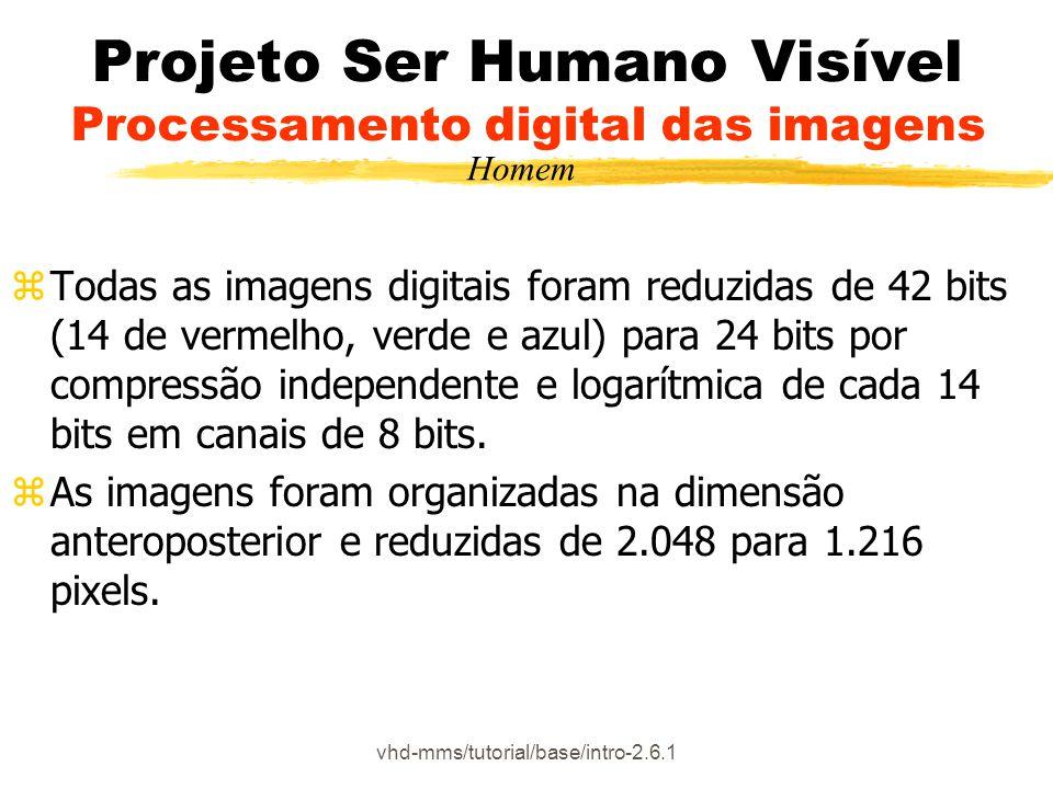 vhd-mms/tutorial/base/intro-2.6.1 Projeto Ser Humano Visível Processamento digital das imagens zTodas as imagens digitais foram reduzidas de 42 bits (14 de vermelho, verde e azul) para 24 bits por compressão independente e logarítmica de cada 14 bits em canais de 8 bits.