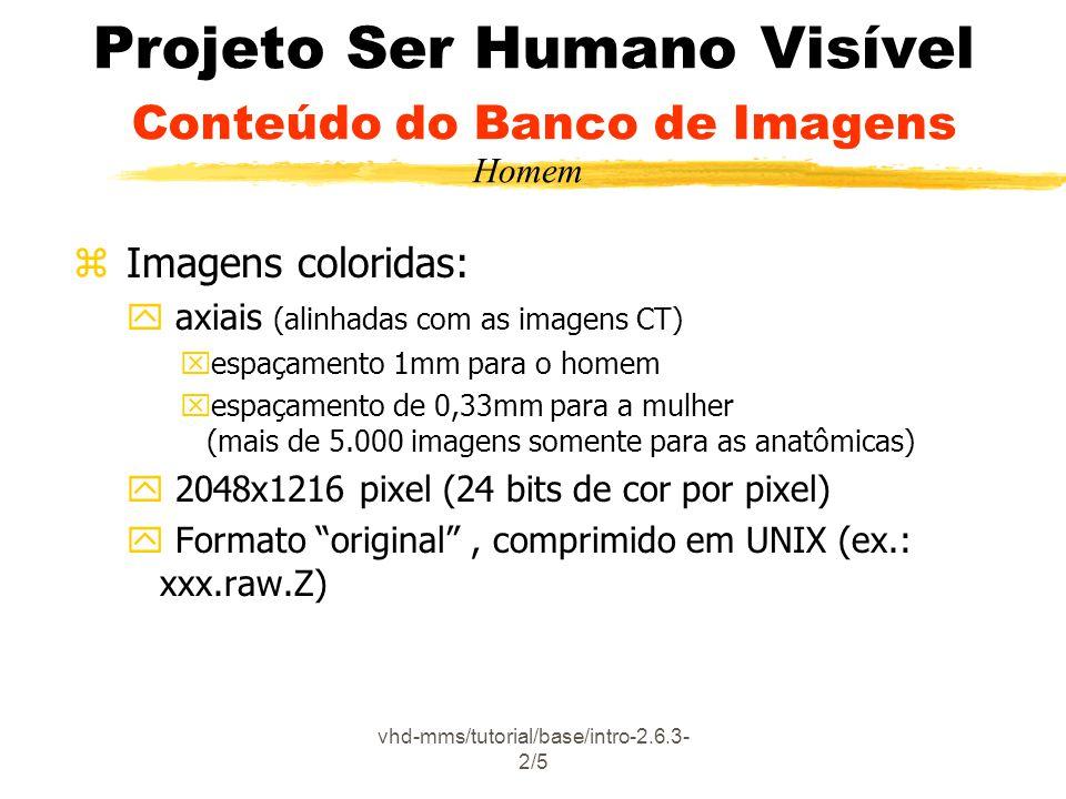 vhd-mms/tutorial/base/intro-2.6.3- 2/5 Projeto Ser Humano Visível Conteúdo do Banco de Imagens z Imagens coloridas: y axiais (alinhadas com as imagens