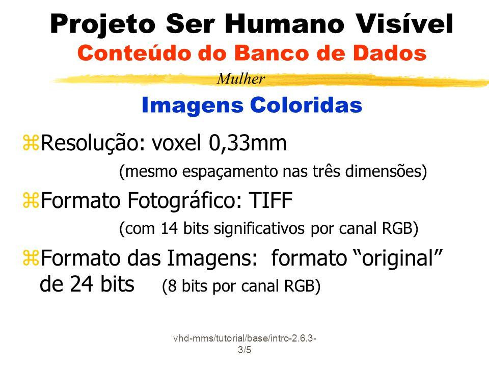 vhd-mms/tutorial/base/intro-2.6.3- 3/5 Projeto Ser Humano Visível Conteúdo do Banco de Dados Imagens Coloridas zResolução: voxel 0,33mm (mesmo espaçam
