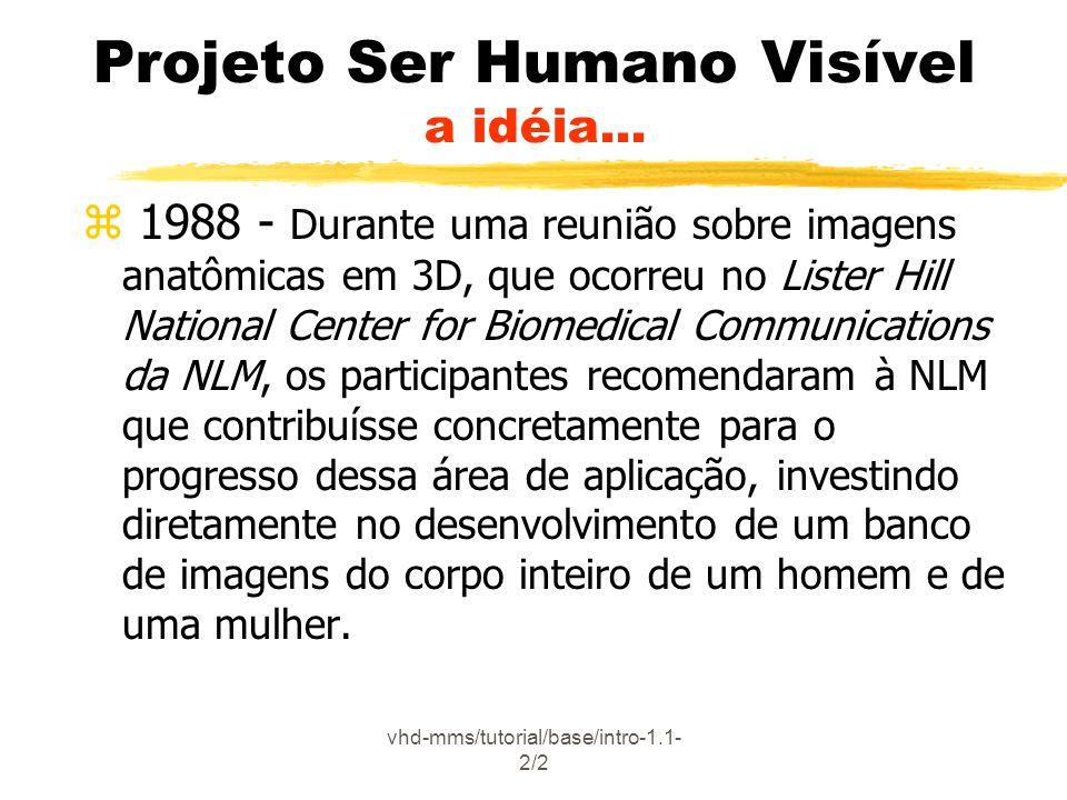 vhd-mms/tutorial/base/intro-2.6.3- 2/5 Projeto Ser Humano Visível Conteúdo do Banco de Imagens z Imagens coloridas: y axiais (alinhadas com as imagens CT) xespaçamento 1mm para o homem xespaçamento de 0,33mm para a mulher (mais de 5.000 imagens somente para as anatômicas) y 2048x1216 pixel (24 bits de cor por pixel) y Formato original , comprimido em UNIX (ex.: xxx.raw.Z) Homem