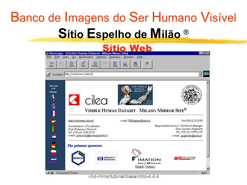 vhd-mms/tutorial/base/intro-4.4.4 B anco de I magens do S er H umano V isível S ítio E spelho de M ilão ® Sítio Web