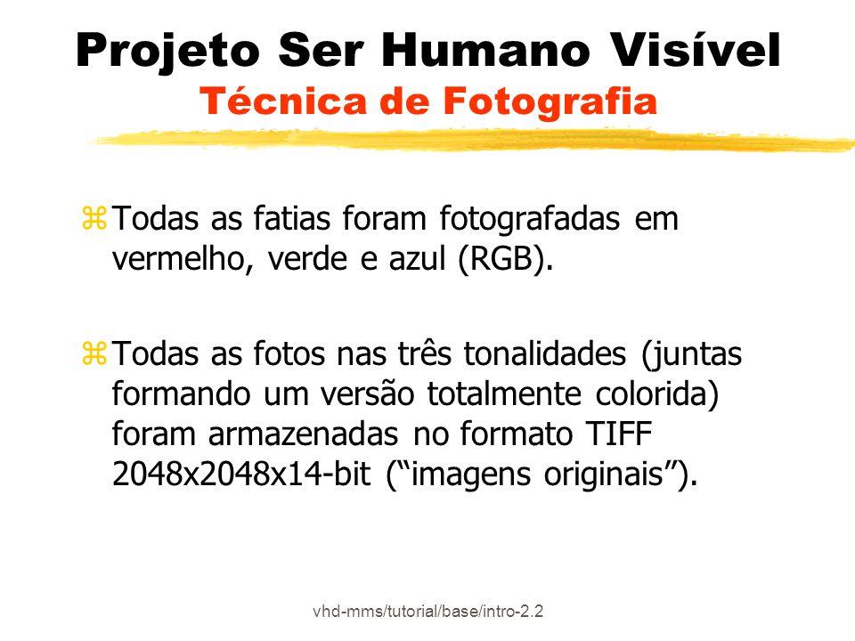 vhd-mms/tutorial/base/intro-2.5 Projeto Ser Humano Visível Alinhamento das imagens CT/MR coloridas zCada imagem colorida individual, CT e MR, foi analisada de modo a verificar a relação entre cada uma delas e estabelecer o alinhamento anatômico (O número de imagens não é o mesmo para as três cores, algumas foram perdidas no corte) zAs fatias CT e anatômicas foram renumeradas para refletir a correspondência, começando em 1.001 e seguindo até 2.878.
