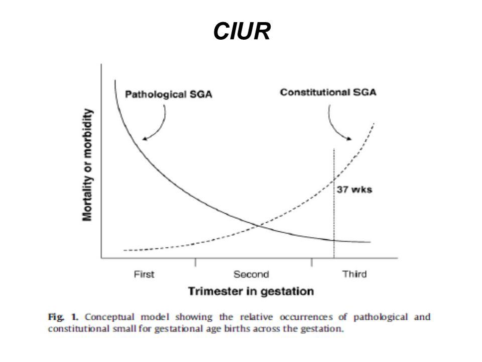CIUR Resultados: As características das mulheres do estudo são estratificadas baseada no status de PIG.