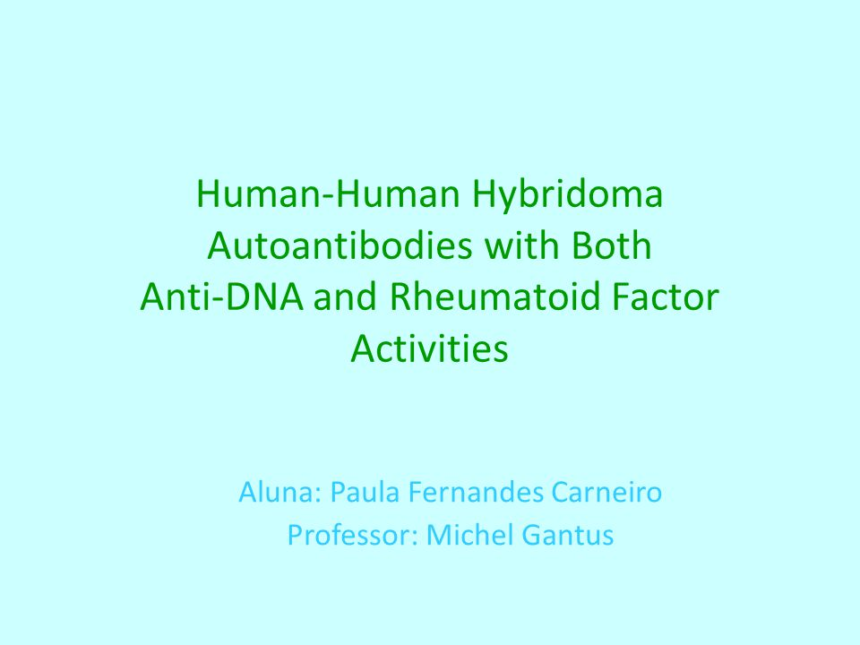 Human-Human Hybridoma Autoantibodies with Both Anti-DNA and Rheumatoid Factor Activities Aluna: Paula Fernandes Carneiro Professor: Michel Gantus