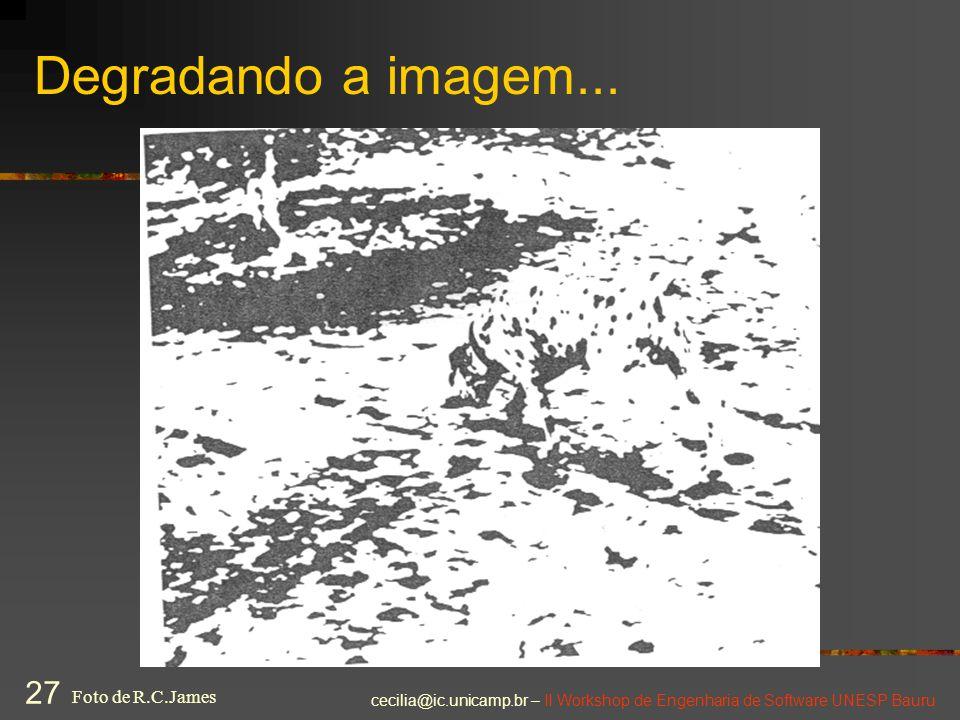 cecilia@ic.unicamp.br – II Workshop de Engenharia de Software UNESP Bauru 27 Degradando a imagem... Foto de R.C.James