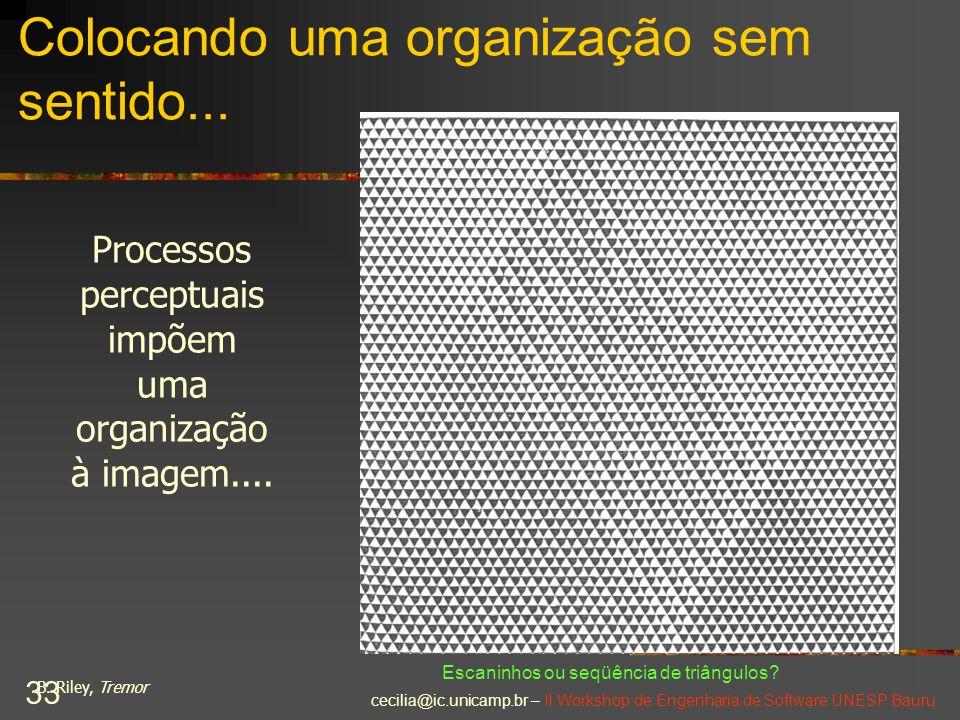 cecilia@ic.unicamp.br – II Workshop de Engenharia de Software UNESP Bauru 33 Colocando uma organização sem sentido... Processos perceptuais impõem uma