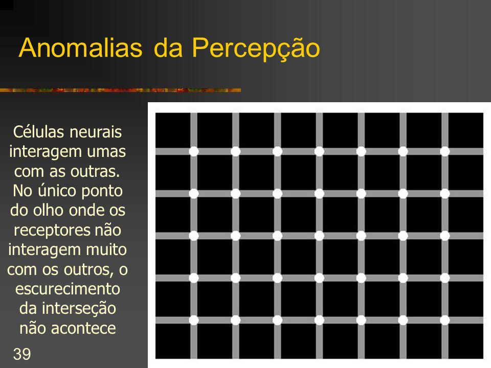 cecilia@ic.unicamp.br – II Workshop de Engenharia de Software UNESP Bauru 39 Anomalias da Percepção Células neurais interagem umas com as outras. No ú