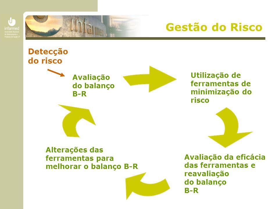 Gestão do Risco Avaliação da eficácia das ferramentas e reavaliação do balanço B-R Avaliação do balanço B-R Alterações das ferramentas para melhorar o balanço B-R Utilização de ferramentas de minimização do risco Detecção do risco