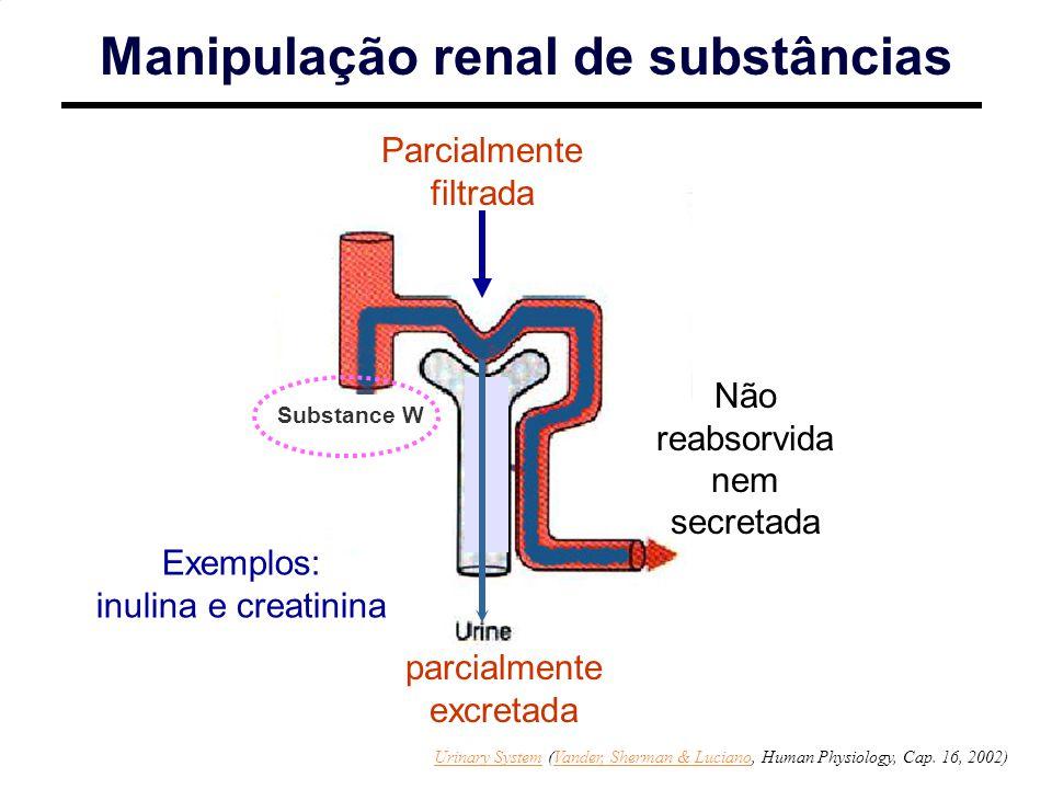 Manipulação renal de substâncias Parcialmente filtrada Não reabsorvida nem secretada parcialmente excretada Exemplos: inulina e creatinina Substance W