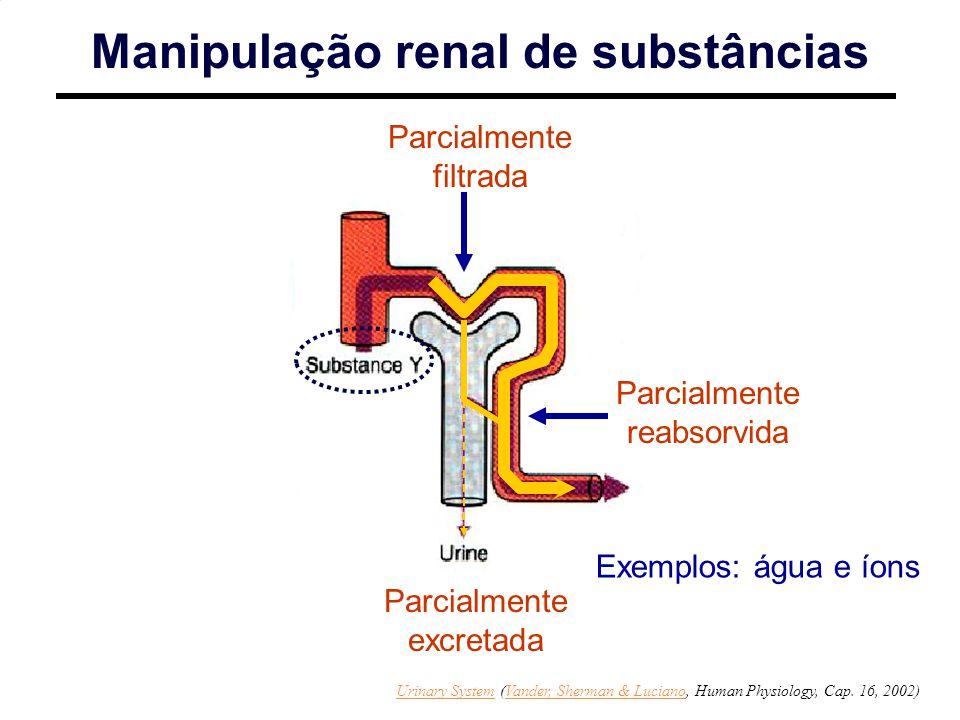 Parcialmente filtrada Manipulação renal de substâncias Parcialmente excretada Exemplos: água e íons Parcialmente reabsorvida Urinary SystemUrinary System (Vander, Sherman & Luciano, Human Physiology, Cap.