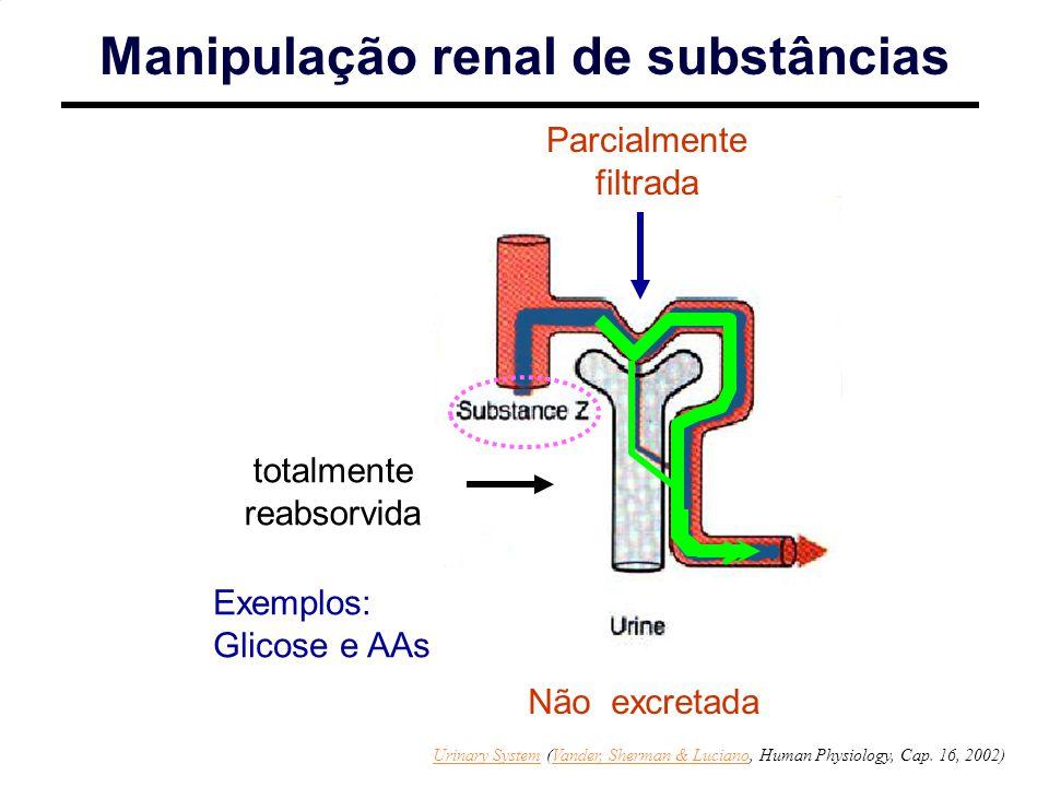 http://www.sci.sdsu.edu/Faculty/Paul.Paolini/ppp/lecture23/sld009.htm Parcialmente filtrada totalmente reabsorvida Manipulação renal de substâncias Nã