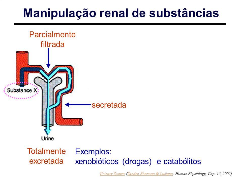 Parcialmente filtrada Totalmente excretada Exemplos: xenobióticos (drogas) e catabólitos secretada Manipulação renal de substâncias Urinary SystemUrinary System (Vander, Sherman & Luciano, Human Physiology, Cap.