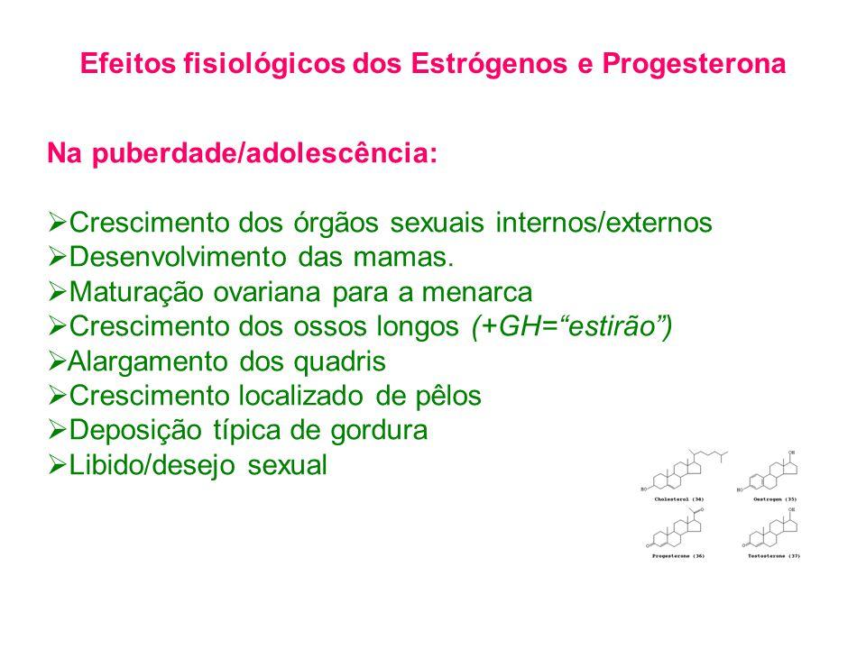 Na puberdade/adolescência:  Crescimento dos órgãos sexuais internos/externos  Desenvolvimento das mamas.  Maturação ovariana para a menarca  Cresc